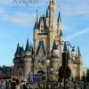Vegetarian Travel: Disney's Magic Kingdom