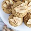 Whole Wheat Apple Ginger Muffins