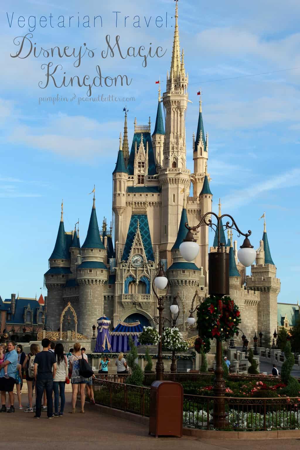 magic kingdom - photo #42